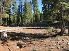 California Land For Sale - .95 Acres With Tall Trees & Level Lot - Modoc County