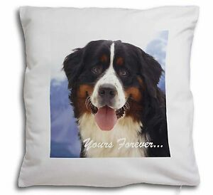 Bernese Mountain Dog Soft Velvet Feel Cushion Cover With Inner Pil, AD-BER6y-CPW