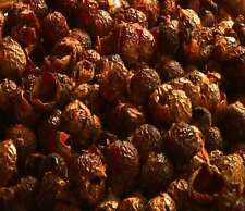 SoapNuts - Soap Berries - BULK BOX- 5kg Soap Nuts soapberries