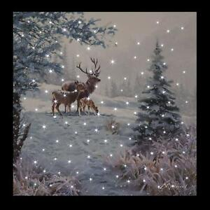 Large LED Fibre Optic Wall Picture/Canvas Snowy Woodland Scene & Deer 40 x 40cm