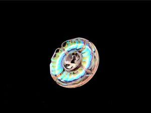 Vintage Pressed Iridescent Glass Rhinestone Button Rainbow Aurora Borealis