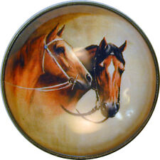 Horse Pair Crystal Dome Button Large Size- HSE 108 FREE US SHIPPING