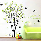 Tree Bird Quote Removable Vinyl Wall Decal Mural Home Art Sticker Diy Home Decor