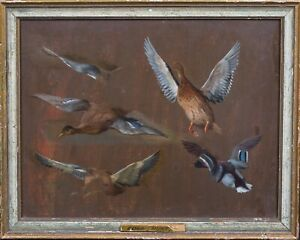 19th Century English Study Of Duck Mallards Birds Wild Fowl by Edgar HUNT