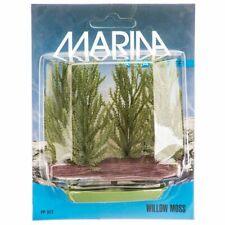 LM Marina Foreground Willow Moss Aquarium Plant