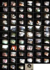 8 mm Film-Privat 1960.Jahre-Wirtschaftswunderzeit-Cortina-Bozen.Antic Films