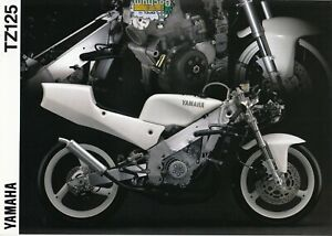 Yamaha  TZ  125  Prospekt   Brochure   2  Seiten   1994