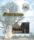 MODERN GEMS - Sierra Leone - Year of Eco Tourism - Souvenir Sheet - MNH