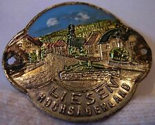 Liesen Hochsauerland used badge mount stocknagel hiking medallion G5500