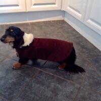 Dachshund Dog Coat MINIATURE (made To Measure) Please Read Item Description .