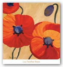 Oriental Poppy Left Lisa Feather Knee Art Print 24x24