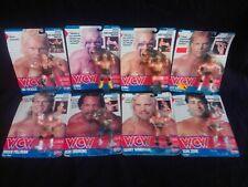 Wcw Galoob Wrestling Figure Collection Rare WWF WWE Hasbro LJN moc
