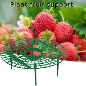 Strawberry Stand Frame Holder Balcony Rack Support Flower D3N3
