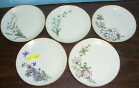 "5 HUTSCHENREUTHER SELB BAVARIA GERMANY FLORAL PLATES 7.75"" LHS NEVER USED"