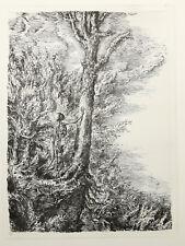 Weber, A. Paul (1893-1980) - DER ALTE BAUM Lithographie