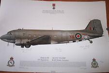 BofB VE DAY DAKOTA 111KG340 YS DM Ltd Ed No41 100 SIGNED by PILOTS & Crew PRINT