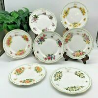 Queens Rosina China Special Flowers Months England Bone China