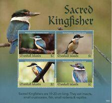 Marshall Islands 2019 MNH Sacred Kingfisher 4v M/S Kingfishers Birds Stamps