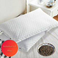 Natural Buckwheat Skin Pillows College Dormitory Single Pillow Core Home Pillow