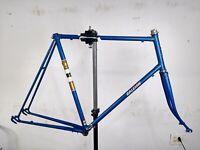 Raleigh Rapide Blue 65cm 700c Lugged Gold Outline Road Bike Frame Steel Vintage