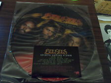 Bee Gees Spirits Having Flown US Press Picture Disc LP