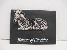 Brooch, Bovano of Cheshire circa 1980 Vintage Zebra Enamel on Copper Pin