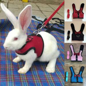 Pet Small Animal Mesh Hamster Rabbit Vest Harness Leash Lead Bunny Traction Rope