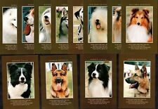12 Working Dog Cards With Verse Lot 2 Large Postcard Size Collie German Sheepdog