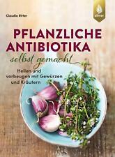 Pflanzliche Antibiotika selbst gemacht Claudia Ritter