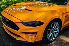 2018 - 2020 Mustang Head Light Tint