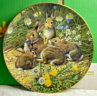Royal Doulton-Fine Bone China Plate-British Wildlife-Family Outing-Adrian Rigby