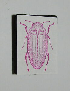 Bug Rubber Stamp Foam Mounted Beetle 1.5 inch High
