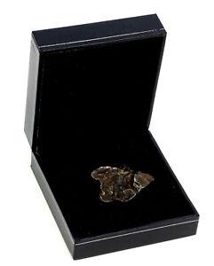 Echte Meteorite, SkihoteAlin-Meteorit im Etui, Russland