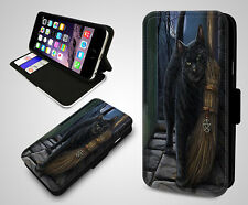 Black Cat Salem Witches Broom Cats Sabrina Flip Wallet Leather Phone Case Cover