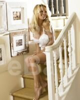 Pamela Anderson 10x8 Photo