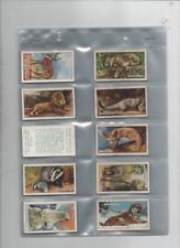 cigarette cards wild animals full set 1937