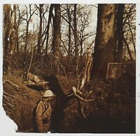 Legno Dei Fougasses Guerre 14-18 Francia Foto Stereo PL46Th2n9 Placca Vintage
