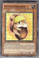 YU-GI-OH Eichelhörnchen Common PHSW-DE032