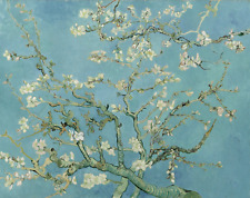 VINCENT VAN GOGH ALMOND BLOSSOM white flowers art print reproduction on canvas