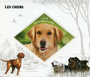 Dogs on Stamps 2019 MNH Golden Retriever Pets Domestic Animals 1v S/S