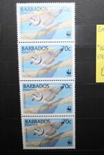 "FRANCOBOLLI STAMPS BARBADOS 1999 ""WWF - BIRDS"" STRIP OF 4 NUOVI MNH** (CAT.K)"