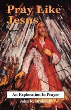Pray Like Jesus (Paperback or Softback)