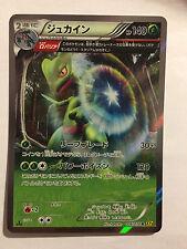 Pokemon Carte / Card Sceptile Rare Holo 006/070 R XY5 1ED