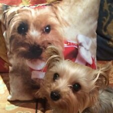 BO CHRISTMAS SCATTER CUSHION ( 18 X 18 INCHES )