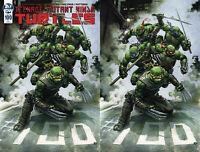 Teenage Mutant Ninja Turtles TMNT 100 IDW 2019 Clayton Crain Virgin Set Variant