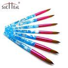 Acrylic Kolinsky Nail Brushes Blue And Pink Sizes 8-20 Nail Art Brush