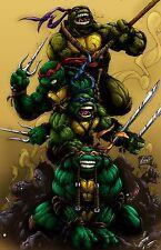 """Teenage mutant ninja turtles 2014 Movie Fabric poster 36"""" x 24""""  Decor 26"""