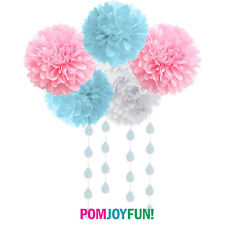 Gender Reveal Party Decorations 5 tissue poms cloud and raindrops garland