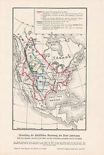 Darstellung der  Ausrottung des Bison americanus KARTE von 1906 Nordamerika