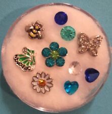 Floating Charm Set~*~Spring Flowers Daisy Bzz Bee Butterfly Mix~*~Living Locket